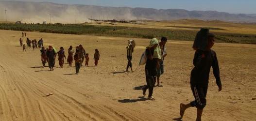 Af Örgütü: Şengal toprakları kanla sulanan infaz alanına dönüştürüldü