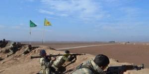 Kobane catsmalar10