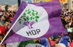 hdp_1